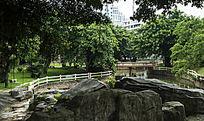 城市中的公园景观