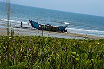 海滩草地蓝天野花小船