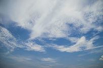 天空上像凤凰一样的白云