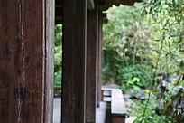 园林景观亭子旁的竹林