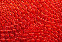 红色皮革纹理图案
