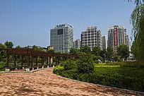 高楼和公园