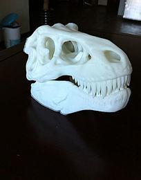 恐龙头骨3D打印