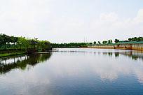 美丽的池塘风景