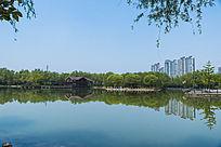 湖边风景近景照