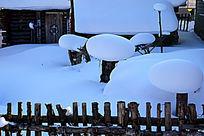 梦幻家园雪蘑菇