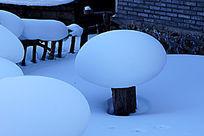 梦幻家园雪蘑菇特写