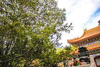 中国古建筑屋顶的雕饰