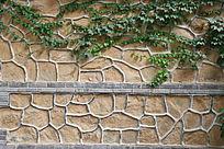 红墙爬青藤背景墙