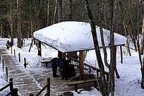 地下森林雪顶小凉棚