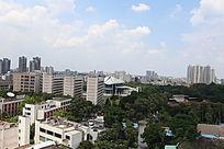 眺望东莞科学馆西北角莞城区城市风景