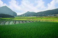 乡村田野大山风景图片