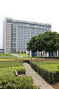 政府广场绿化带