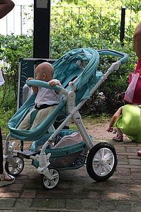 婴儿车上的婴儿