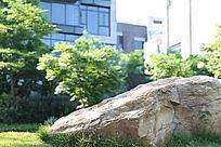别墅小区的景观石