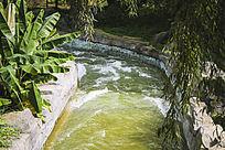 垂柳下湍急的溪流