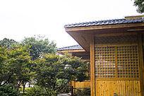 枫叶和黄色木屋