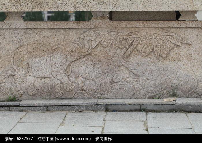 浮雕动物大象图片