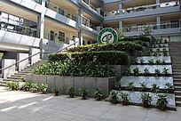 莞工松山湖校区行政办公楼园林绿化