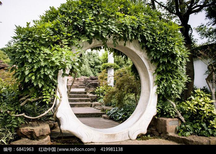景观手绘藤蔓植物