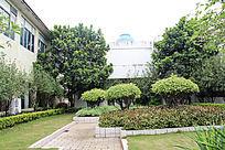 岭南佳园度假酒店景观花园