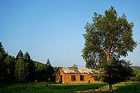 农村郊外风景