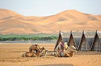 沙漠绿洲休闲的骆驼队