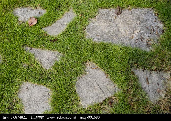 草地青石板图片,高清大图 花卉花草素材