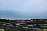 浓云下的村庄大棚