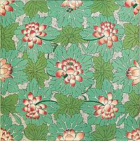 传统花卉纹样 荷花