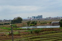 农田田野风景图片