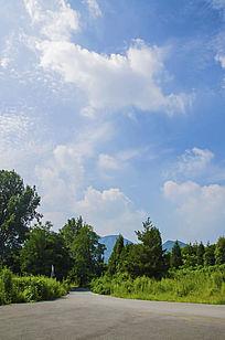 千山皈源寺路边的树木与蓝天白云