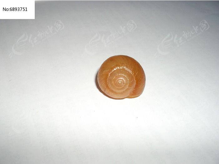 蜗牛壳jpg免费下载_爆炸破碎素材