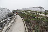 辰山花展馆