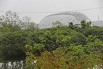 绿色科技植物馆