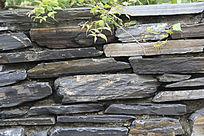 绿色植物与石头墙纹