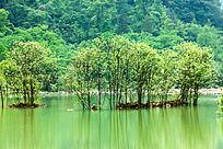 贵州荔波旅游