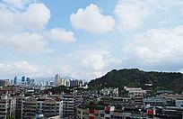 眺望温州杨府山公园图片