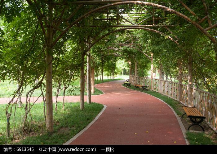 植物园道路图片