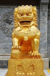金色的石雕狮子