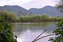 林间小溪摄影