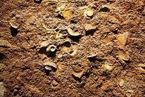 泥土中考古瓷片背景墙