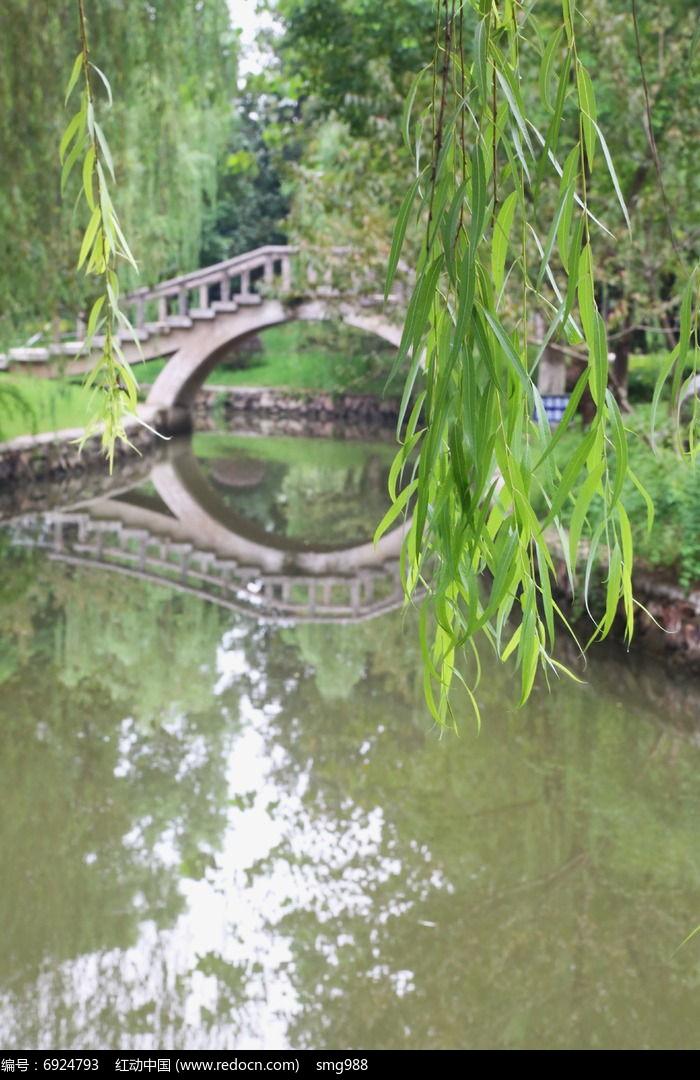 倒影在水中的石拱桥和柳树叶高清图片下载 编号6924793 红动网