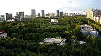 上海大宁公园绿地
