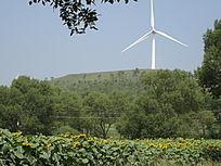 观望田园美景与远方的风力发电机