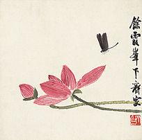 齐白石《蜻蜓荷花图》高清国画