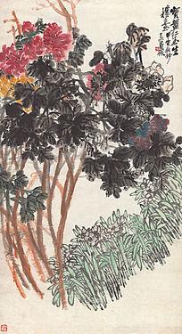 吴昌硕《牡丹水仙图》高清国画