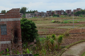 乡村田野村庄建筑图片