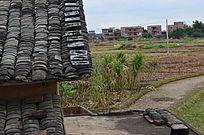 乡村小镇田野风景图片