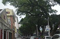 古建筑别墅风景图片